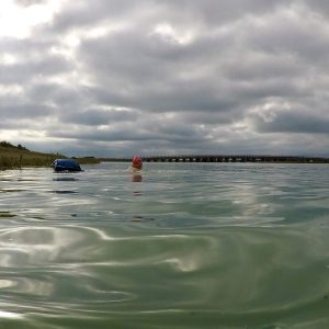 male swimmer in river